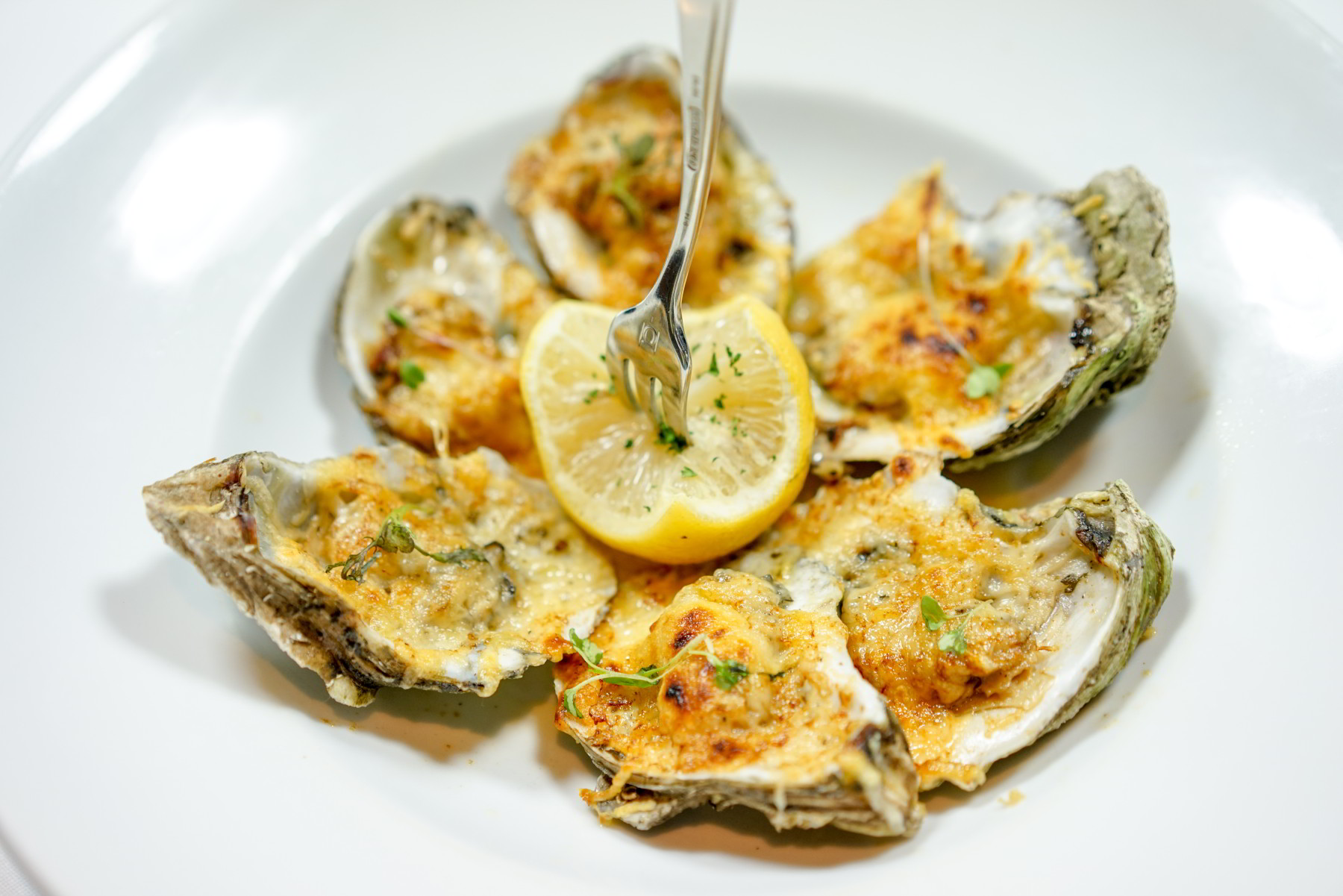 Chargrilled Oysters CRIOLLO Fall 2015