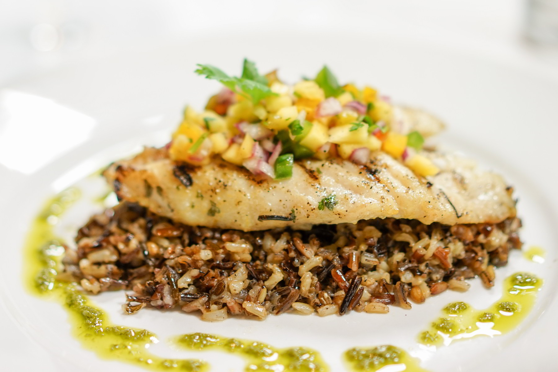 Grilled Warsaw Grouper